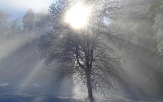 Masterchange Blogartikel - Wintersonnenwende vom 21. Dezember 2017